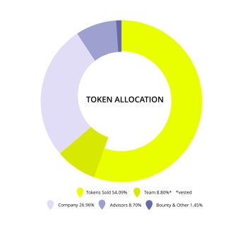 goforit token allocation